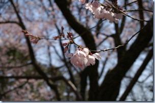 2005_04_02_02