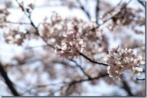 2005_04_09_04