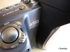550_1